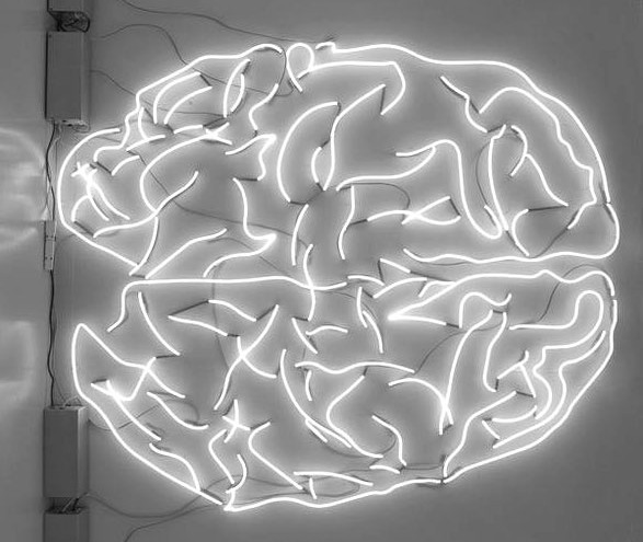 brain-neon-light-memory