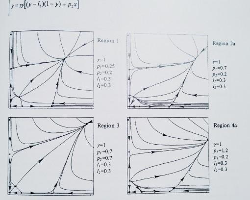 Prey-Predator dynamics, Bazykin